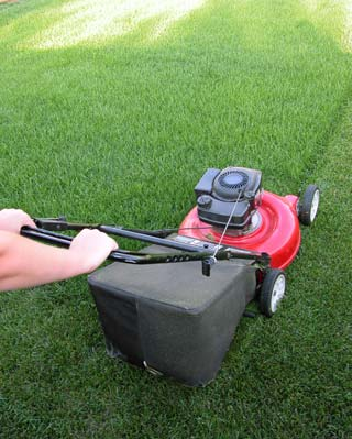 Learn To Increase The Best Push Mower Speed
